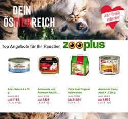Angebote von Supermärkte im Zooplus Prospekt in Wels ( Vor 3 Tagen )