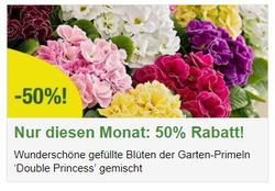 Angebote von Bakker im Wien Prospekt