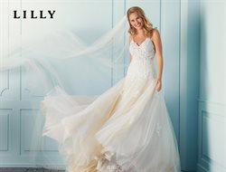 Lilly Katalog ( Abgelaufen )