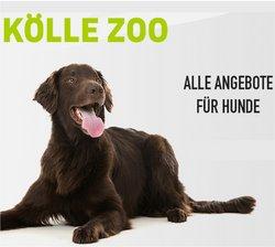Angebote von Kölle Zoo im Kölle Zoo Prospekt ( 15 Tage übrig)