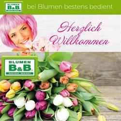 Angebote von Blumen B&B im Blumen B&B Prospekt ( Mehr als 30 Tage)