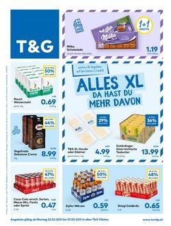 T&G Katalog ( 6 Tage übrig )