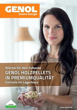 Angebote von Baumärkte & Gartencenter im Lagerhaus Graz Land Prospekt in Wels ( 12 Tage übrig )