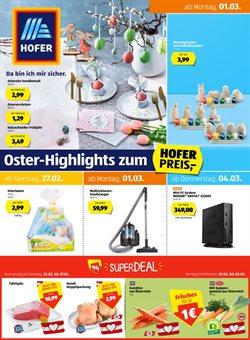 Hofer Katalog ( Vor 3 Tagen )