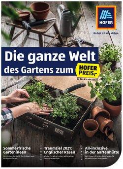 Hofer Katalog ( 7 Tage übrig)