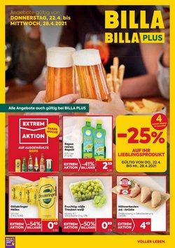 Billa Katalog ( Gestern veröffentlicht )