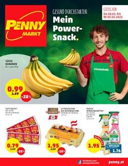 Penny Katalog ( Neu )