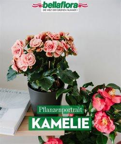 Bellaflora Katalog in Innsbruck ( 4 Tage übrig )