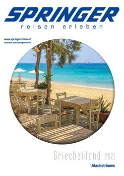 Angebote von Reisen im Springer Reisen Prospekt in Ried im Innkreis ( Mehr als 30 Tage )