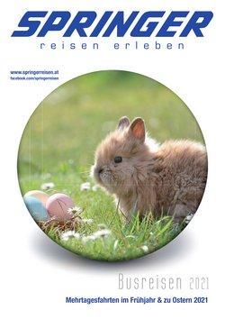 Angebote von Ostern im Springer Reisen Prospekt ( 7 Tage übrig)