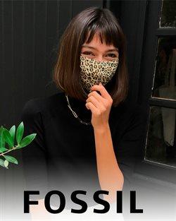 Fossil Katalog ( Abgelaufen )