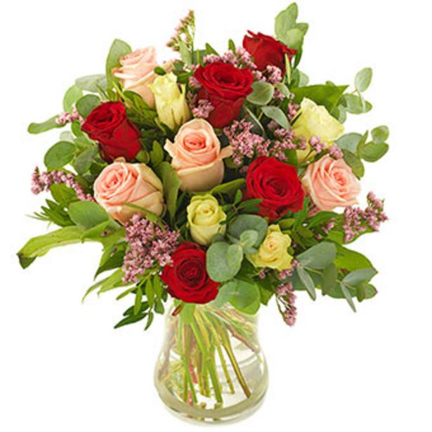 Atemberaubende Rosen für 34,99€